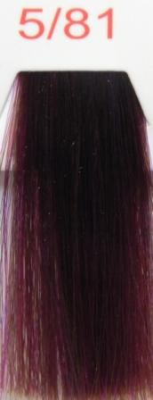 Easy vio 5/81 светлый каштаново фиолетовый